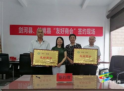 剑河县来松桃调研旅游、产业发展等工作